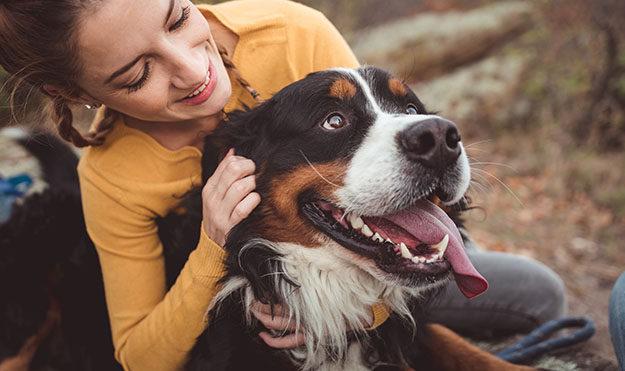 Pet-Friendly With Dog Park